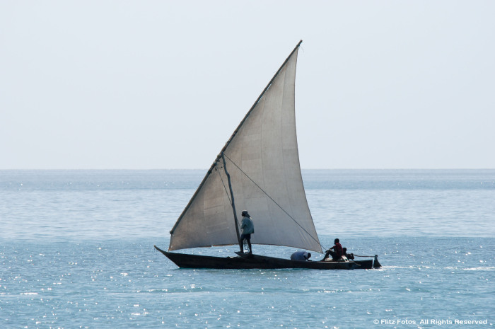 Lone Dhow